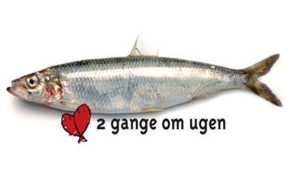 Fisk 2 gange om ugen