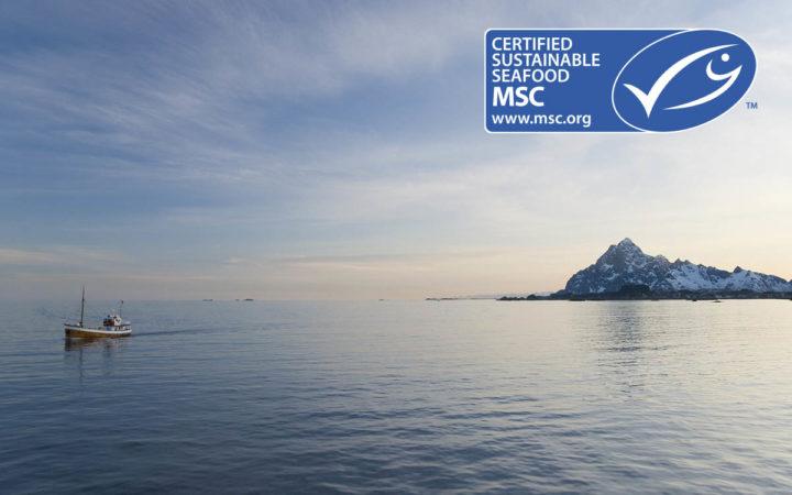 Hav og bæredygtigt fiskeri